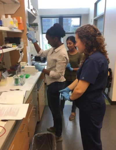 Since October 2018, I have been a part of the Brudno Lab under the joint NC State-UNC BME Department, where I have the opportunity to research different methods of drug delivery using hydrogels in order to improve treatment targeting and outcomes. Here, I am observing the process of cross-linking the hydrogels.
